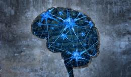 """Neuroimagerie et """"DYS"""""""